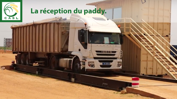 Réception du Paddy
